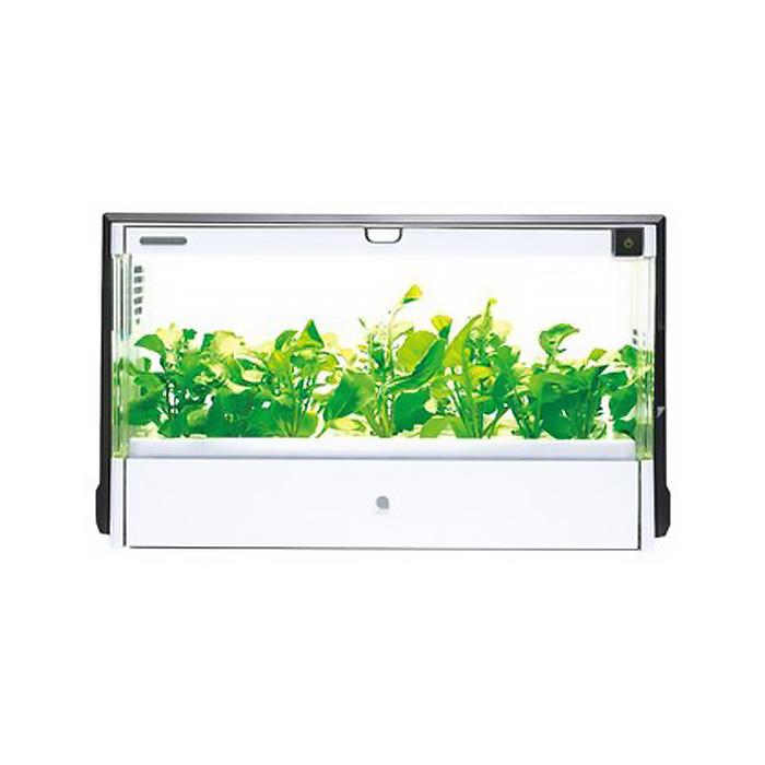 家用水耕種植種菜機
