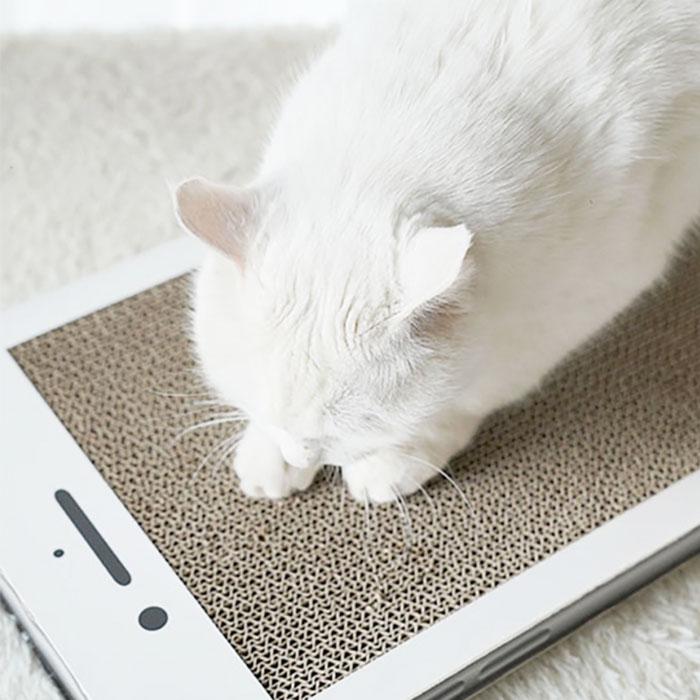 貓咪禮物推薦 手機貓抓板