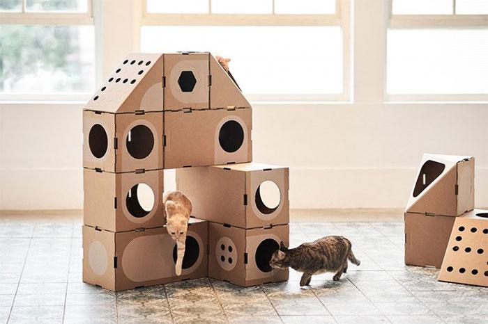 貓咪禮物推薦