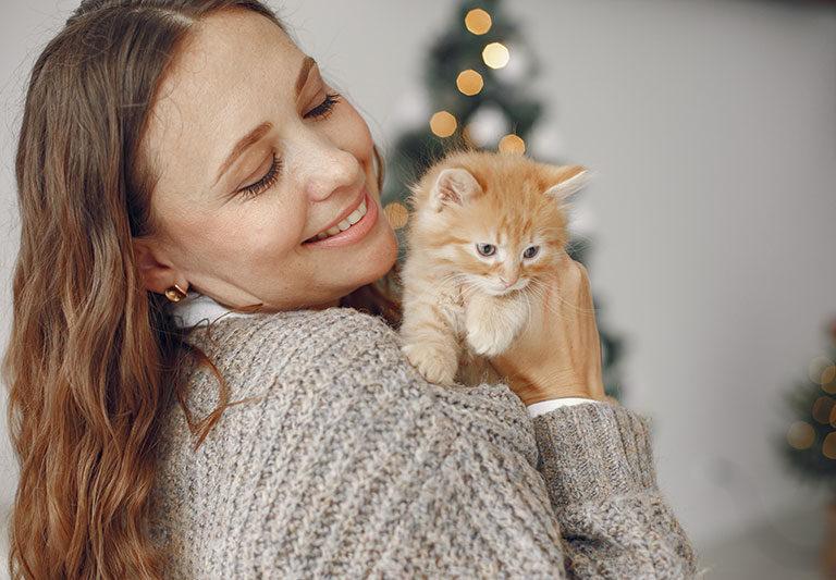 15款實用貓咪禮物推薦!貓奴需要的都在這!【2021最新版】